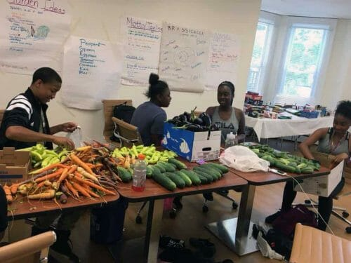 Trellis For Tomorrow Program: Youth Seed Enterprise
