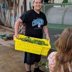 Trellis 4 Tomorrow Program: Food For Thought